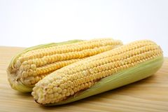 Corn on a wood table Royalty Free Stock Photo