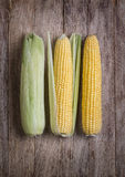 Corn on wood table. Fresh corn on cobs on rustic wooden table, closeup Royalty Free Stock Images