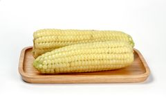 Corn on wooden plate, Waxy Corn. Isolate on white background royalty free stock photo