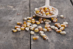 Corn on a wooden spoon. Close up Royalty Free Stock Image