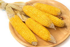 Corn on the wooden tray Stock Image