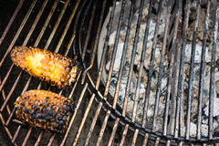 Corn yellow black on bbq grill royalty free stock image
