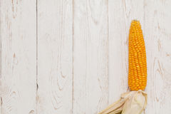 Corn (Zea mays) close-up. Gold yellow ripe corn on vintage wooden table (zea mays) close up Royalty Free Stock Photo