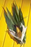 Corncob στα φύλλα στο κίτρινο ξύλινο υπόβαθρο Στοκ Φωτογραφίες