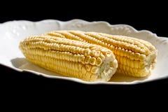 corncob arkivfoto