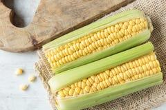 Corncob. Fresh raw corncob on jute cloth Stock Photos