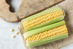 Corncob. Fresh raw corncob on jute cloth Royalty Free Stock Photography