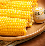 Corncob on the plate Stock Images