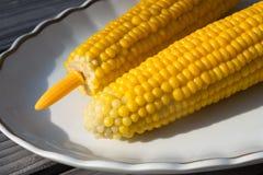 corncobs 2 Стоковое Фото