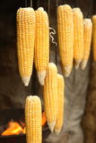 Corncobs. Hanging near a barbecue fire Royalty Free Stock Images