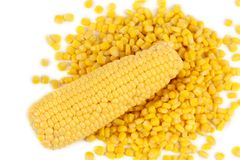 Corncobs and canned corns. Royalty Free Stock Photo