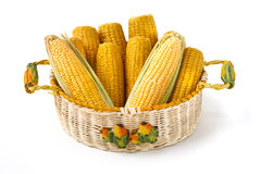 Corncobs in decorated basket Royalty Free Stock Photography