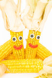 Corncobs with eyes and mouth Stock Photo