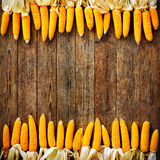 Corncobs  on rustic wooden background Royalty Free Stock Photo