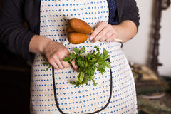 Corndog with mustard, ketchup and parsley hands, recipe, cooking, hostess apron Stock Photo