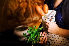 Corndog with mustard, ketchup and parsley hands, recipe, cooking, hostess apron Stock Photography