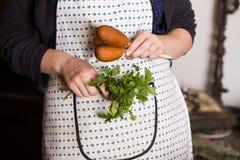 Corndog z musztardy, ketchupu i pietruszki rękami, przepis, kucharstwo, gospodyni domu fartuch zdjęcie stock