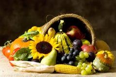 Corne d'abondance Photo stock
