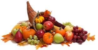 Corne d'abondance d'automne sur un au sol de dos de blanc Photo libre de droits