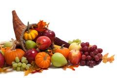 Corne d'abondance d'automne sur un au sol de dos de blanc Photographie stock libre de droits