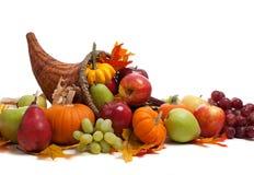 Corne d'abondance d'automne sur un au sol de dos de blanc Photos stock