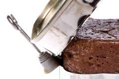 Corned Beef Isolated Stock Photo