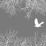 Corneille blanche Illustration de Vecteur