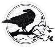 Corneille noire se reposant sur une branche d'un chêne, et runes scandinaves, découpées dans la pierre illustration stock