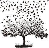 Corneilles dans un arbre Photographie stock libre de droits