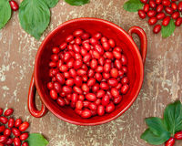 Cornel berries in red bowl Stock Images
