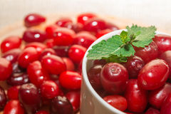 Cornel berries in a white cup Royalty Free Stock Photos