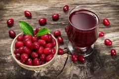 Cornel berry juice Stock Photography