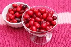 Cornel Cherries Stock Images