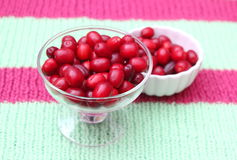 Cornel Cherries. Some red cornel cherries in a bowl Stock Photography
