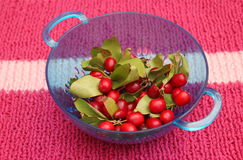Cornel cherries Stock Photo