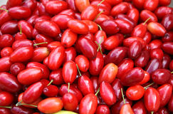 Cornelian cherries background Stock Photos
