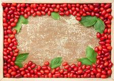 Cornelian cherries in wooden frame Stock Photo