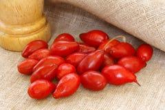 Cornelian cherry Stock Image