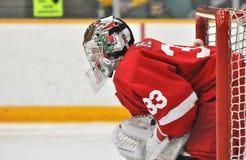 Cornell Andy Iles in NCAA Hockey Game Stock Photos