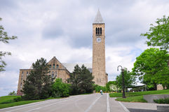 Cornell Bell tower Royalty Free Stock Photo