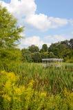 Cornell ogródy botaniczni, Houston staw z Gazebo Fotografia Royalty Free