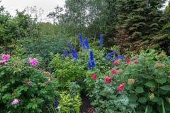 Cornell University Botanical Gardens photos stock