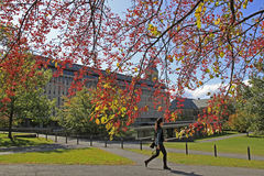 Cornell University Campus in Ithaca Stock Photography