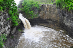 Cornell University Landscape royalty free stock image