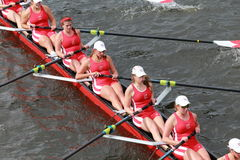 Cornell University races in the Head of Charles Regatta Women's Championship Eights Stock Photography
