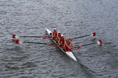 Cornell University races in the Head of Charles Regatta women's Championship Fours Royalty Free Stock Photo