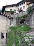 Cornello dei Tasso. Medieval Tasso's construction in Cornello dei Tasso, historic village in the high Brembo valley in Bergamo Stock Images