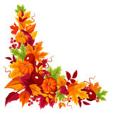 Corner background with pumpkins and colorful autumn leaves. Vector illustration. Stock Photos