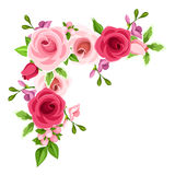 Corner background with red and pink roses. Vector illustration. royalty free illustration