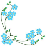 Corner with blue forget me not flowers on a white background. Corner with blue forget me not flowers on a white background, illustration vector illustration